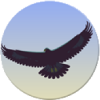 Eagle Mode: not your average file manager