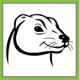 Find hidden data on your computer with PCFerret
