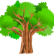 Create HTML family trees with Genealogica Grafica